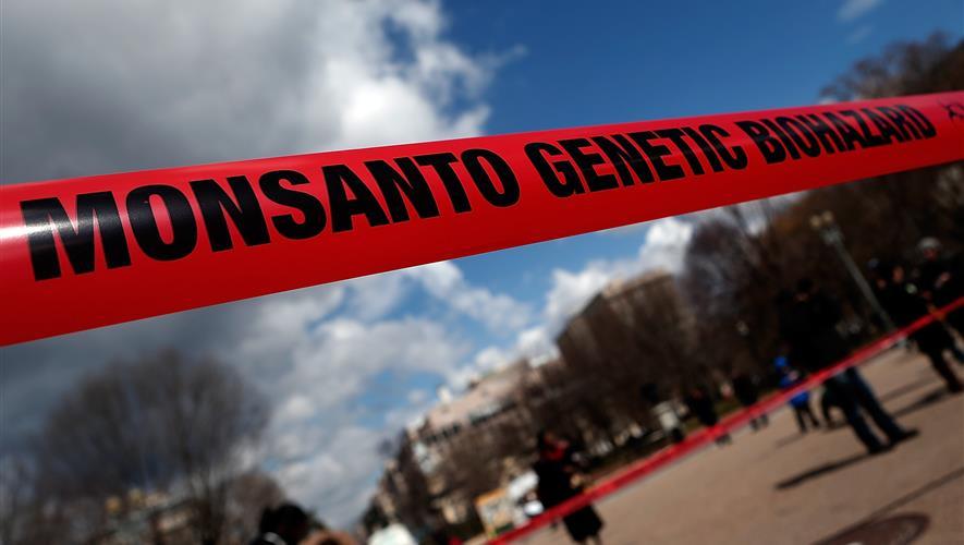 Bidra.no - GMO - myter og fakta